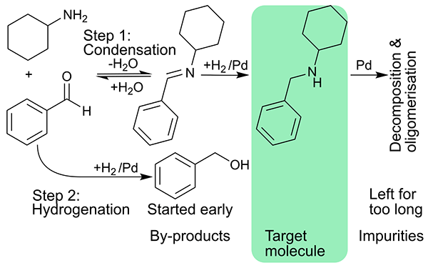 Cascading imine formation and hydrogenation